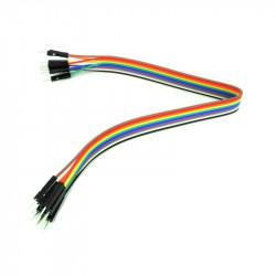 30 cm 40p Male to Female Wire